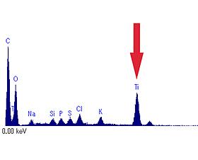 電顕的EDX分析でのチタン信号検出(矢印)